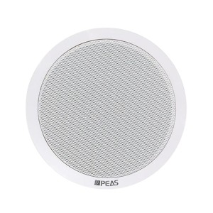 NT-215 2*15 IP Network Ceiling speaker Picture Show